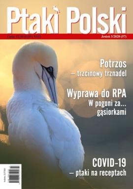 Ptaki Polski 3/2020