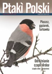 Ptaki Polski 4/2013