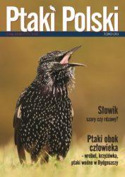 Ptaki Polski 3/2013