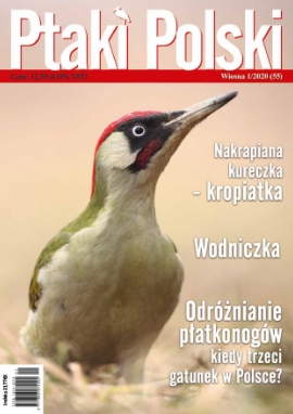 Ptaki Polski 1/2020