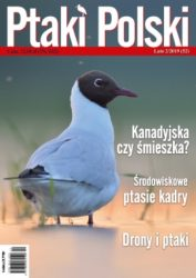 Ptaki Polski 2/2019